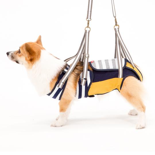 歩行補助ハーネスLaLaWalk中型犬・コーギー用 ボーダーマスタード[白×紺×マスタード]