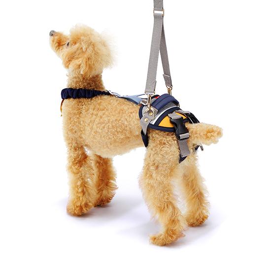 歩行補助ハーネスLaLaWalkホールド小型犬用 ボーダーマスタード[白×紺×マスタード]